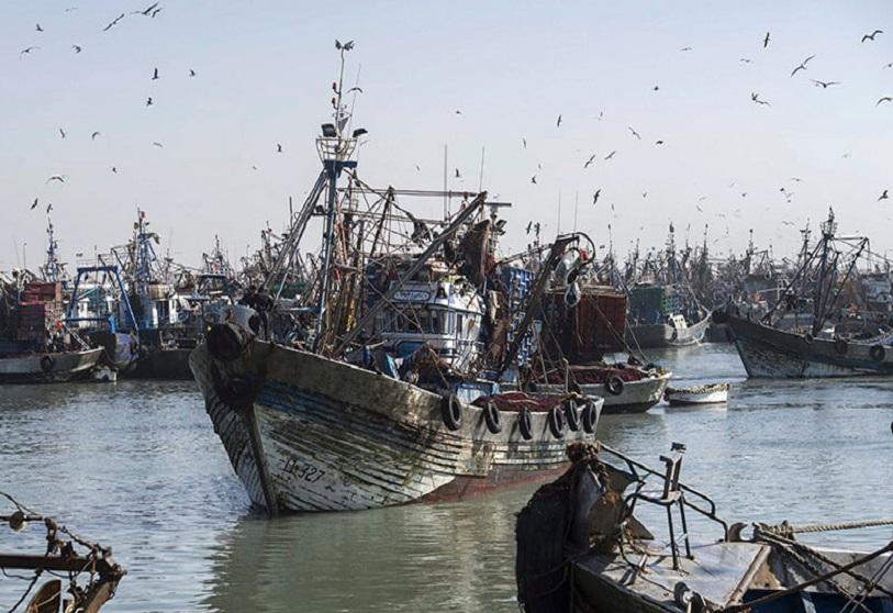 A fishing boat enters the port of El Ayoun